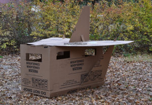 Cardboard Box Spaceship